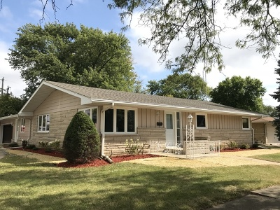 Joliet Single Family Home New: 724 East Palladium Drive