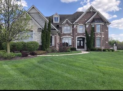 St. Charles Single Family Home New: 5n095 Prairie Rose Drive