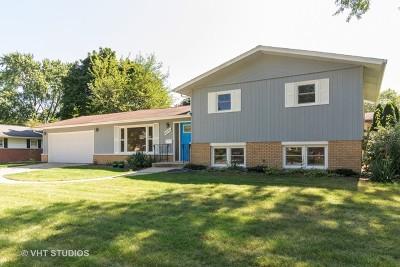 Downers Grove Single Family Home New: 6541 Lyman Avenue