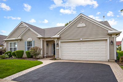 Huntley Single Family Home New: 13669 Winterberry Lane