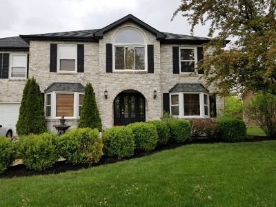 Chicago, Aurora, Elgin, Hammond, Joliet, Kenosha, Michigan City, Naperville Single Family Home New: 2925 Somme Street