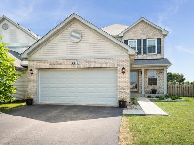 Chicago, Aurora, Elgin, Hammond, Joliet, Kenosha, Michigan City, Naperville Single Family Home New: 1219 Violet Lane