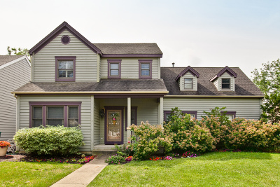Grayslake Single Family Home For Sale: 1038 Mount Vernon Drive