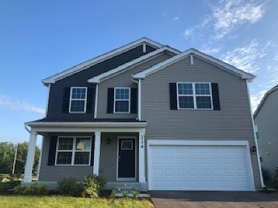 Oswego Single Family Home New: 234 Liszka Lane