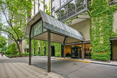 Condo/Townhouse For Sale: 100 East Bellevue Place #6D