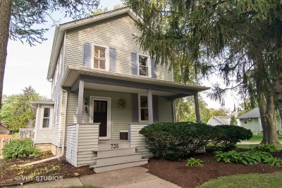 Naperville Single Family Home New: 735 North Brainard Street