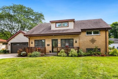 Downers Grove Single Family Home For Sale: 447 Bunning Drive