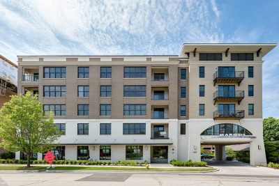 Downers Grove Condo/Townhouse For Sale: 940 Maple Avenue #212