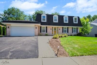 Naperville Single Family Home For Sale: 720 Citation Drive