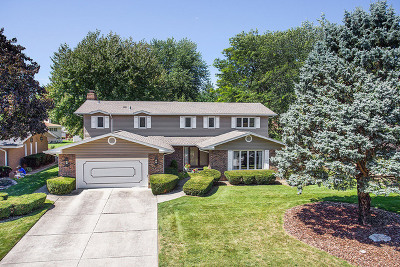 Palos Heights, Palos Hills Single Family Home For Sale: 12412 South Cheyenne Drive