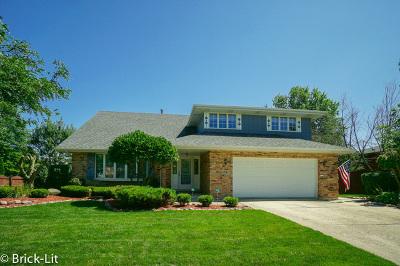 Mokena Single Family Home For Sale: 18917 Creekview Lane