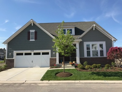 Willowbrook Single Family Home For Sale: 309 Palomino Trail