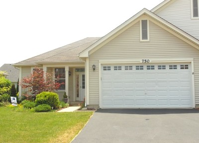 Oswego Condo/Townhouse For Sale: 750 Bellevue Circle