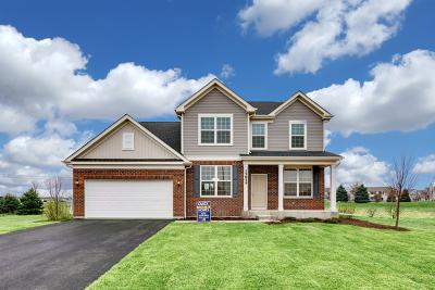 Naperville Single Family Home For Sale: 3915 Mahogany Lane