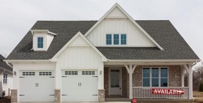 Burr Ridge Single Family Home For Sale: 2731 Lakeside (Lot 9) Circle