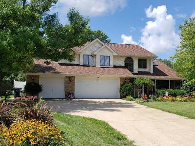 Minooka, Channahon Single Family Home For Sale: 124 Zapata Lane