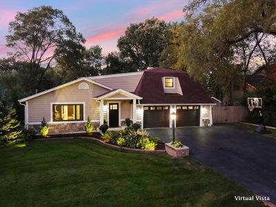 Addison Single Family Home For Sale: 17w364 Red Oak Avenue