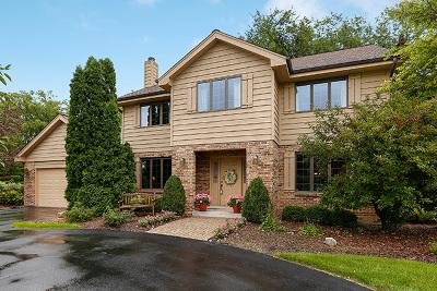 Burr Ridge Single Family Home For Sale: 9021 Royal Drive