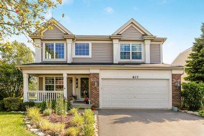 Shorewood Single Family Home For Sale: 817 Vertin Boulevard