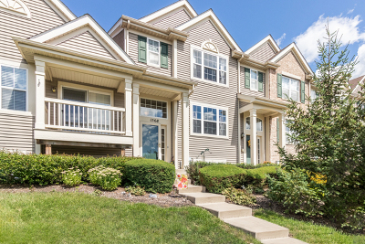Pingree Grove Condo/Townhouse For Sale: 1568 Windward Drive