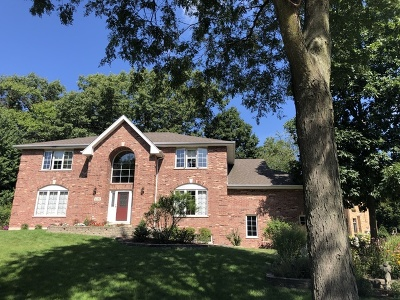 West Dundee Single Family Home For Sale: 2342 Preston Lane