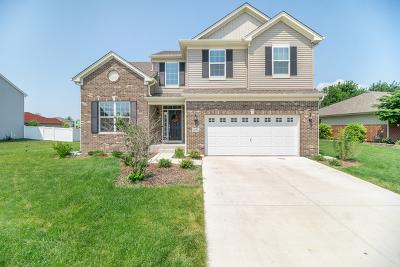 Minooka, Channahon Single Family Home For Sale: 612 Flanagan Drive