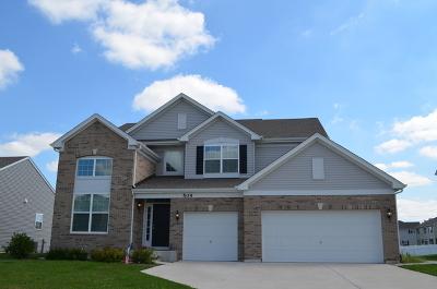 Minooka, Channahon Single Family Home For Sale: 602 Flanagan Drive