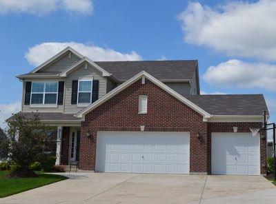Minooka, Channahon Single Family Home For Sale: 614 Flanagan Drive