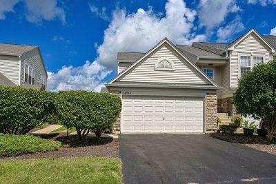 Plainfield Condo/Townhouse For Sale: 24918 Gates Lane