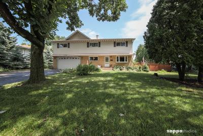 Woodridge Single Family Home For Sale: 7543 Woodridge Drive