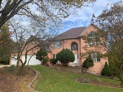 Oswego Single Family Home For Sale: 9 Na Au Say Court