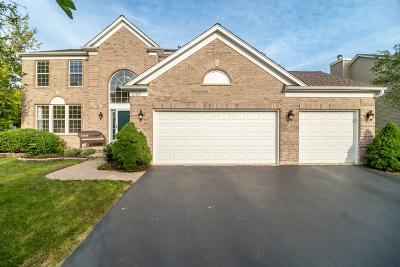 Aurora Single Family Home For Sale: 1157 Firestone Lane
