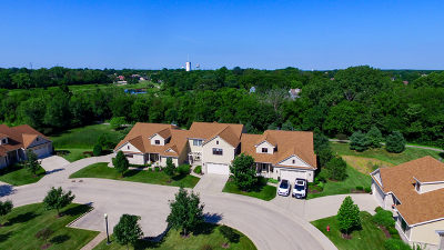 Frankfort Condo/Townhouse For Sale: 9397 Bull Rush Circle