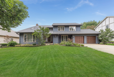 Naperville Single Family Home For Sale: 432 Flock Avenue