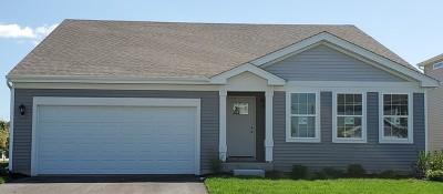 Romeoville Single Family Home For Sale: 435 Stonebrook Drive