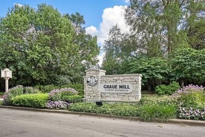 Hinsdale Condo/Townhouse For Sale: 1401 Burr Oak Road #216B