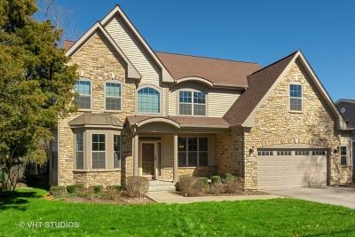 Burr Ridge Single Family Home For Sale: 8915 Skyline Drive