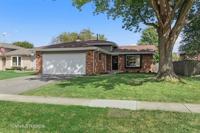 New Lenox Single Family Home For Sale: 2418 Kerry Winde Drive
