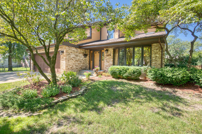Schaumburg Single Family Home For Sale: 1536 Seward Street