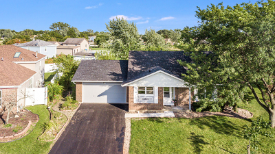 Frankfort Single Family Home For Sale: 19807 South Woodruff Court