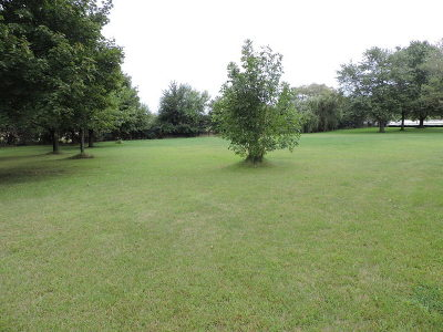 Frankfort Residential Lots & Land For Sale: 8800 West Lincoln Highway