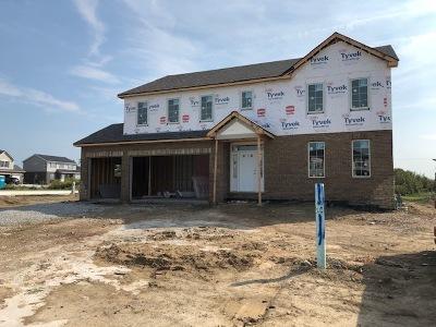 New Lenox Single Family Home For Sale: 2971 Brett Drive