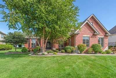 Frankfort Single Family Home For Sale: 11082 Siena Drive
