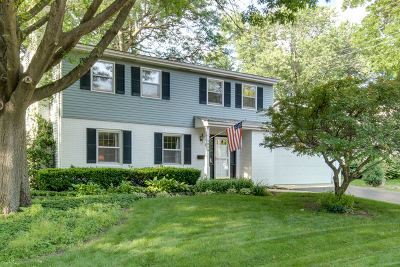 Naperville Single Family Home For Sale: 1029 Anne Road