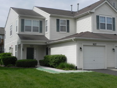 Naperville Rental For Rent: 927 Genesee Court #927