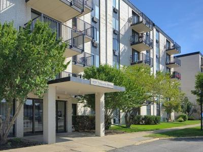 Niles Condo/Townhouse Price Change: 9128 West Terrace Drive #4K