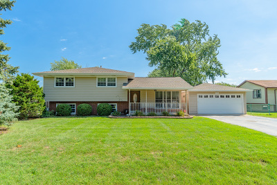 Frankfort Single Family Home For Sale: 229 Willow Street