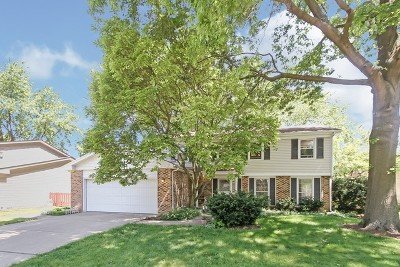 Lisle Single Family Home For Sale: 6710 Breckenridge Road