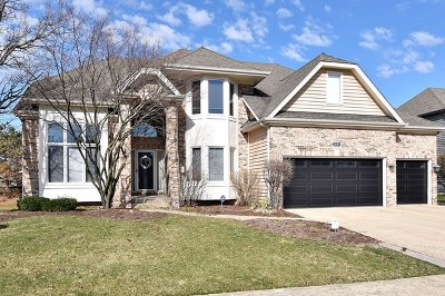 Aurora Single Family Home For Sale: 2690 Ginger Woods Drive