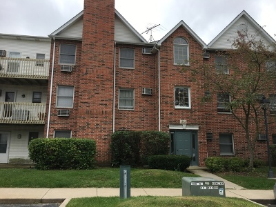 Lake In The Hills Condo/Townhouse For Sale: 1382 Cunat Court #3-C